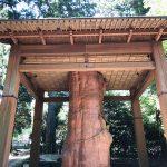 超パワースポット!国造神社@熊本県の阿蘇