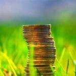 取引額が極端に数ない草コインの今を調査