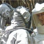 バード・インフェルノ 死鳥菌